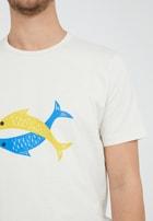 JAAMES FISH